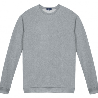 Graues Frau Sweat-Shirt